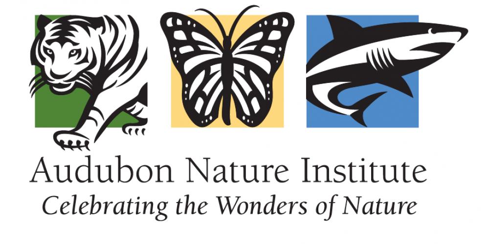 Audubon Nature Institute: New Orleans' Natural Treasures