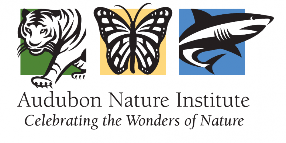 Audubon Nature Institute: New Orleans' Natural Treasures