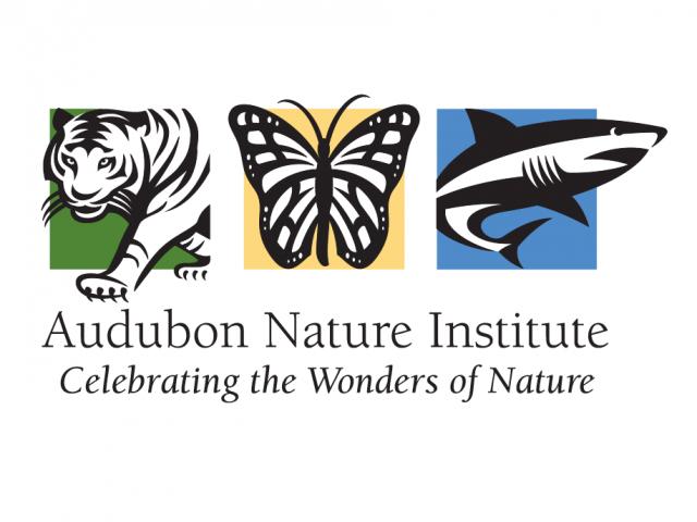 Zoo Year's Eve at Audubon Zoo