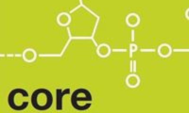 Core Element