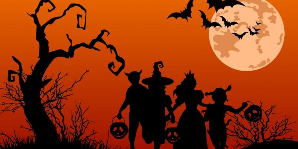 Gourds & Ghouls: Pumpkin Patches & Halloween Fun on Both Shores