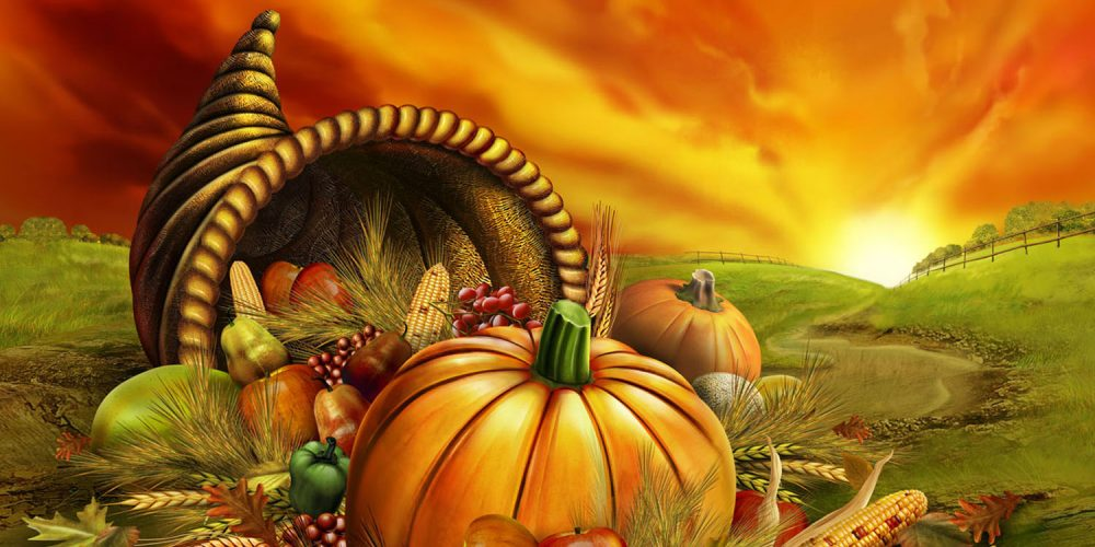 Giving Thanks & Giving Back: Worthy Charities on Both Shores