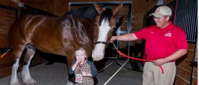 Horses, Hops and Cops