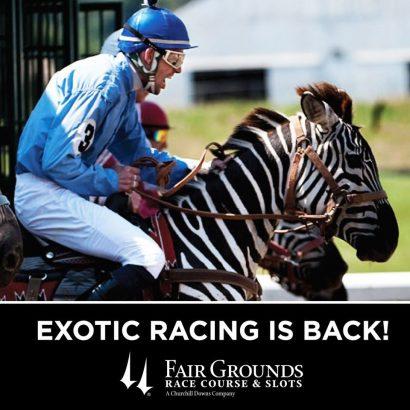 Exotic Animal Racing